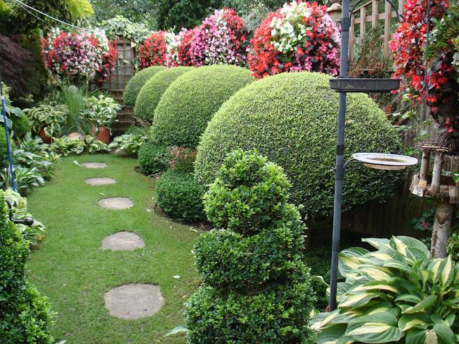 my garden in september