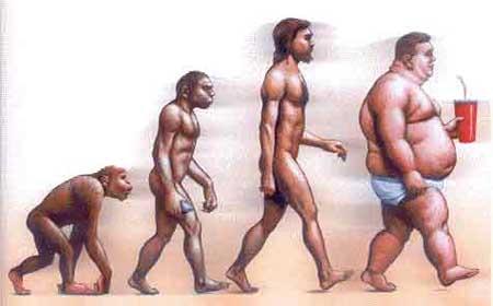 Evolucion de la obesidad
