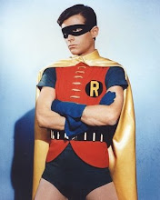 Robin The Boy Wonder Costume