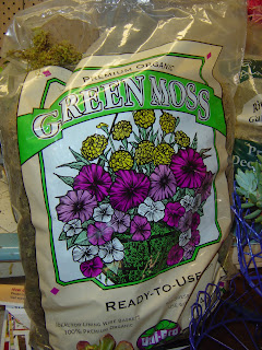 DIY Moss Planter | organizingmadefun.com