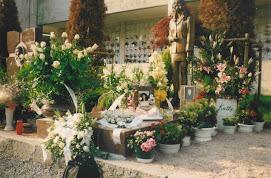 RICORDI..... dalla tua casa ... alla tua dimora ...cimitero di Baggio!