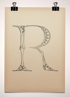 Typeface anatomy by Björn Johansson
