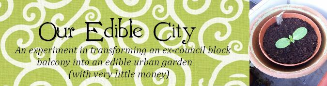 Our Edible City