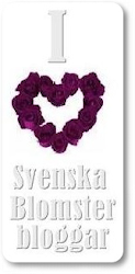 SVENSKA BLOMSTERBLOGGAR