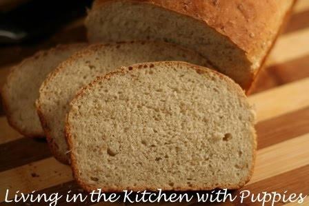 Living in the Kitchen with Puppies: Maple Oatmeal Bread