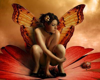 momentos-borboletas