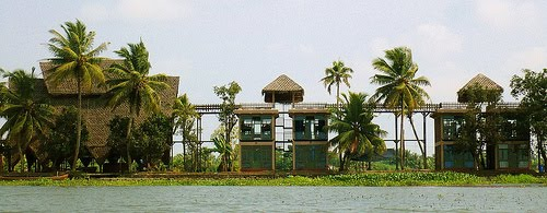 Best view island Resort,alleppey