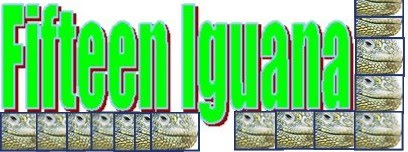 Fifteen Iguana