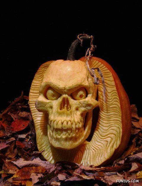Amazing wonders art of pumpkin carving