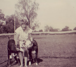 Julie with her poddies in the sheep run at the back of the shearing shed, early 1960 aged 11.