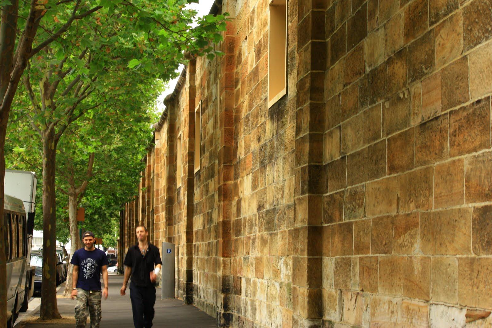 Sydney Eye  The Wall  Darlinghurst