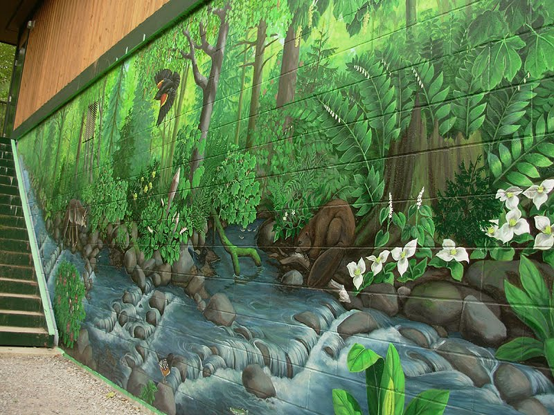 wildlife wall murals nature related keywords suggestions