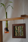 Bambù...Vista 1.