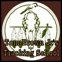 Tom Brown Jr. / School