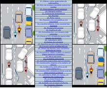 Completo manual de conducción.