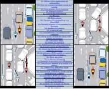 Completo manual de conducción.