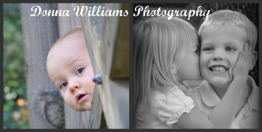Donna Williams Photography