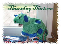 Thursday Thirteen - Dragonheart the Dragon
