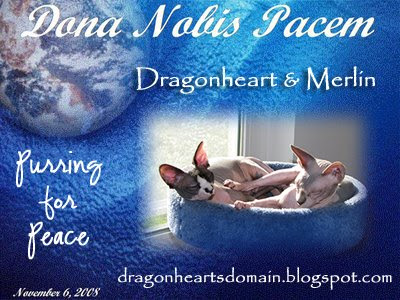 Dragonheart and Merlin's Peace Globe