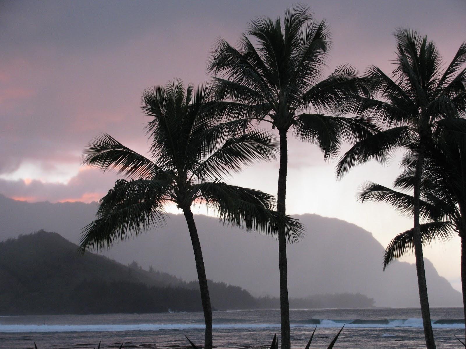 http://3.bp.blogspot.com/__Ws4bRsM4ZI/TST8TeSY7zI/AAAAAAAAAxw/KLb2pP5X5Y0/s1600/Beach2.jpg