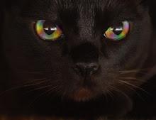 The Rainbow Eater