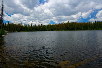Lost Lake near Vail Colorado is a great hike for dogs