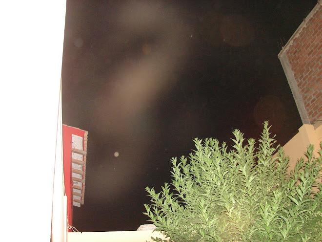 Alien gris de Nibiru  27/enero/2010 sec