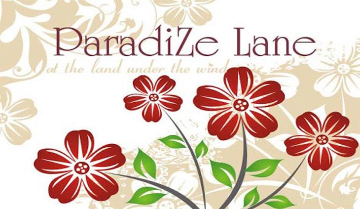 ParadiZeLane