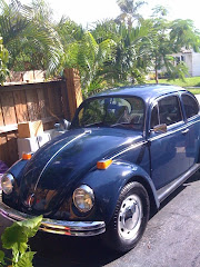 Norm's 69 Beetle