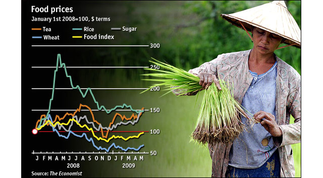 World Food Prices Chart 2008-2009