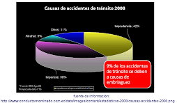 Causas de accidentes año 2008