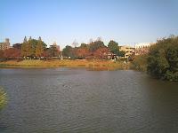 オレンジ色に染まった杁ヶ池
