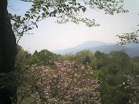 西行公園から恵那山を見る