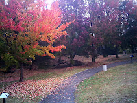 陶磁資料館の紅葉
