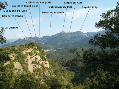 En primer terme La Vela i darrera seu el Tastanós, Picamill,...