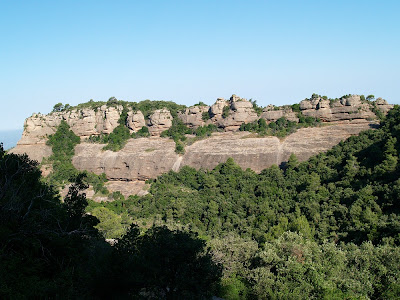 Carena del Roure Llarg