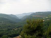 La vall del Rossinyol amb les urbanitzacions de Sant Feliu de Codines: els Saulons d'en Déu, al seu fons