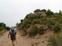 Anant cap els Camps de Cal Criba