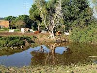 La bassa del Montpar