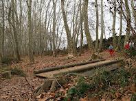 Pont sobre el Torrent Caganell al passeig dels plàtans