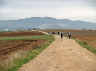 Vistes de la Serralada Litoral des del Camí dels Bandolers