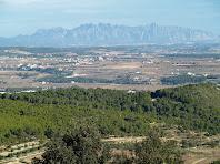La plana penedesenca amb Montserrat al fons, vista des del Turó del Samuntà