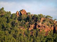 Detalls de les roques de la Serra de Can Valent