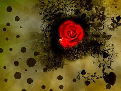 red roses wallpaper. red rose wallpaper.