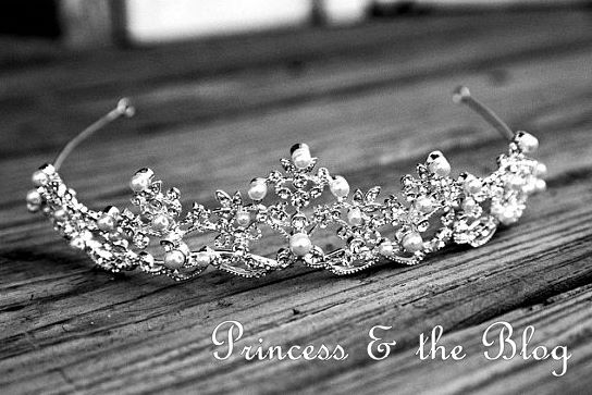 Princess & the Blog