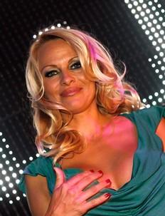 Pamela Anderson debe más de un millón de dólaresid=