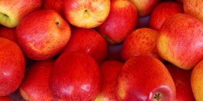 Semen con sabor a manzana