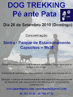association pé ante pata