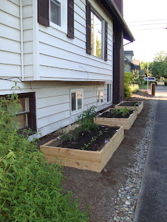 Our New Raised Beds