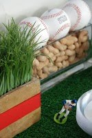 baseball peanut table decor